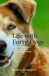 Life With Forty Dogs