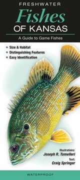 Freshwater Fishes of Kansas | Craig Springer |