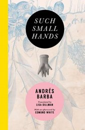 Such Small Hands | Andrés Barba |