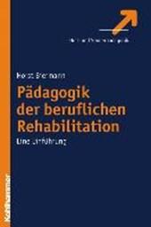 Pädagogik der beruflichen Rehabilitation