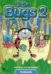 Little Bugs. Level 2. Flashcards