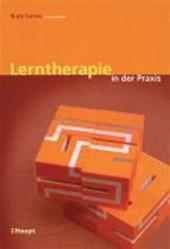 Lerntherapie in der Praxis