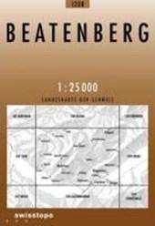 Swisstopo 1 : 25 000 Beatenberg