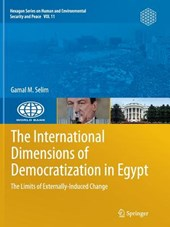 The International Dimensions of Democratization in Egypt