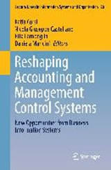 Reshaping Accounting and Management Control Systems |  |