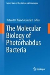The Molecular Biology of Photorhabdus Bacteria | auteur onbekend |