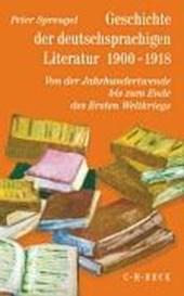 Geschichte der deutschsprachigen Literatur 1900 -