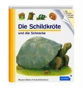 Die Schildkröte und die Schnecke