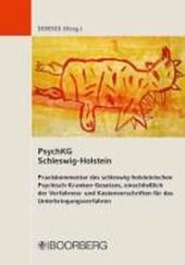 PsychKG Schleswig-Holstein