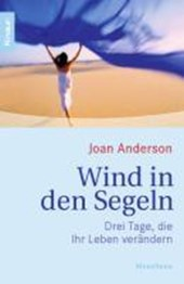 Wind in den Segeln