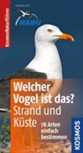 Welcher Vogel ist das? Strand und Küste