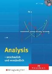 Analysis. anschaulich und verständlich: Schülerband