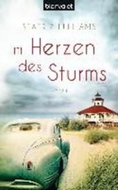 Im Herzen des Sturms