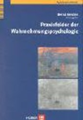 Praxisfelder der Wahrnehmungspsychologie