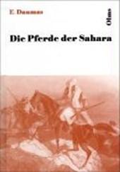 Die Pferde der Sahara