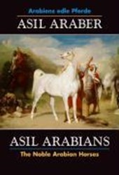 Asil Araber / Asil Arabians