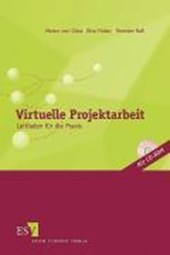 Virtuelle Projektarbeit