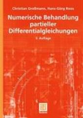 Numerik partieller Differentialgleichungen