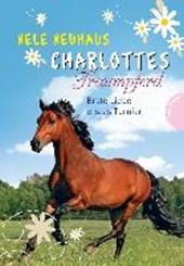 Charlottes Traumpferd 04. Erste Liebe, Erstes Turnier