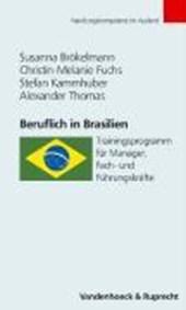 Beruflich in Brasilien