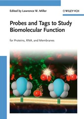 Probes and Tags to Study Biomolecular Function