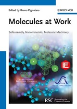 Molecules at Work | Bruno Pignataro |