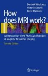 How does MRI work? | Dominik Weishaupt |