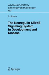 The Neuregulin-I/ErbB Signaling System in Development and Disease | Stefan Britsch |
