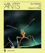 The Ants | Bert Hölldobler |