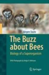 The Buzz about Bees | Jürgen Tautz |