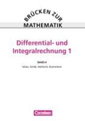 Brücken zur Mathematik IV