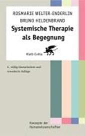 Systemische Therapie als Begegnung