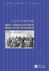 Kulturwissenschaft(en): Bilanz - Kritik - Perspektiven