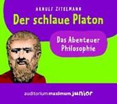 Der schlaue Platon