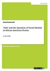 """Sula"" and the Question of Social Identity in African American Fiction 