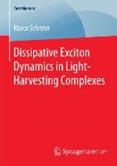 Dissipative Exciton Dynamics in Light-Harvesting Complexes | Marco Schröter |