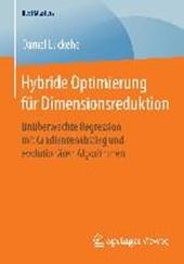 Hybride Optimierung für Dimensionsreduktion