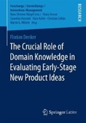 The Crucial Role of Domain Knowledge in Evaluating Early-Stage New Product Ideas