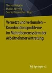 Vernetzt und verbunden - Koordinationsprobleme im Mehrebenensystem der Arbeitnehmervertretung