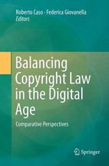 Balancing Copyright Law in the Digital Age | auteur onbekend |
