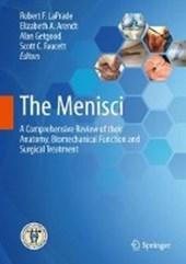 The Menisci