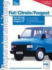 Fiat Ducato. Peugeot J5. Citroen C25 ab Baujahr