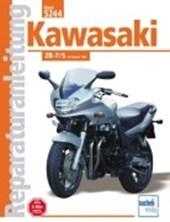 Kawasaki ZR-7/S ab