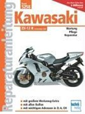Kawasaki ZX-12 R ab Modelljahr