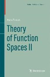 Theory of Function Spaces | Hans Triebel |