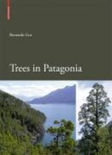 Trees in Patagonia | Bernardo Gut |