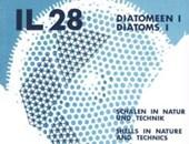 Diatomeen 1 - Schalen in Natur und Technik