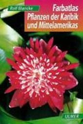 Farbatlas Pflanzen der Karibik und Mittelamerikas