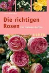 Die richtigen Rosen für meinen Garten