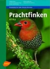 Prachtfinken Afrika